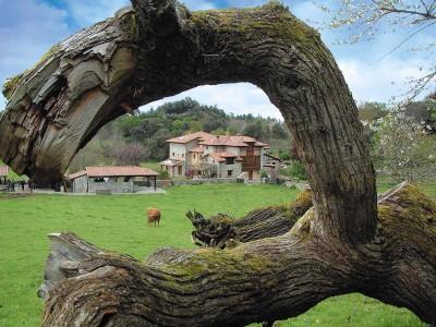 turismo rural 1