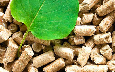 biomasa 4
