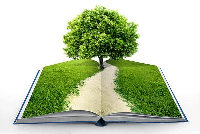 educacion ambiental 1