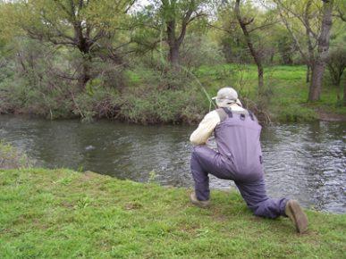 trucha pesca